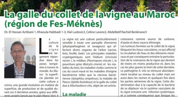 Article publié par Dr El Hassan Achbani et son équipe dans la revue Agriculture du Maghreb n° 99
