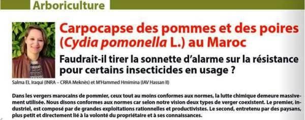 Article signé Dr Salma El Iraqui El Houssaïni (URPP, CRRA Meknès) dans Agriculture du Maghreb de mai-juin 2018, p. 60