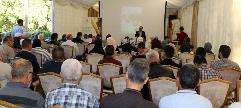 Dr Abderrahim Bentaibi (Chef du CRRA Meknès) animant le séminaire