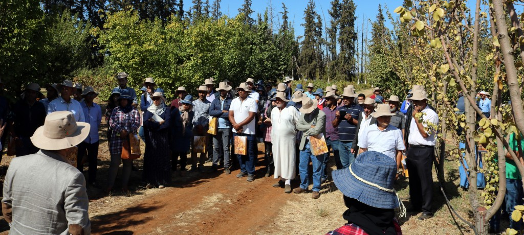 Vue des participantEs lors de la visite du domaine
