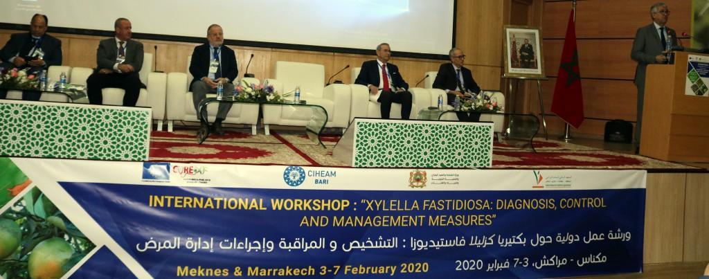 Panel de présidence de l'atelier international « Xyllela fastidiosa : diagnostic, contrôle et mesures de gestion », Meknès 03 février 2020