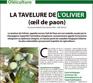 """Article publié dans la revue """"Agriculture du Maghreb"""" (132, déc. 2020, pp. 84-85)"""